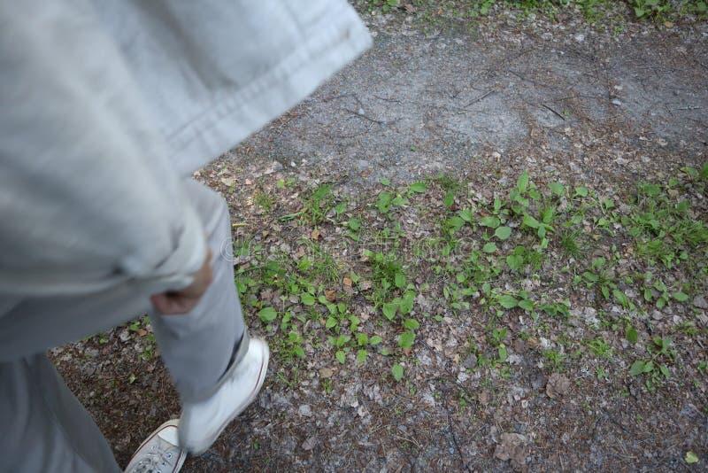 走在公园的人 r 在走在地面的运动鞋的少年腿 在鞋子的人的脚在草 免版税库存图片