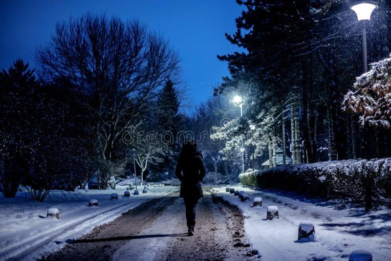 走在公园的妇女,当雪落时 免版税图库摄影