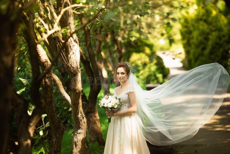 走在公园的美丽的新娘 风婚姻的面纱分散剂  一个新娘的秀丽画象在令人惊讶的自然附近的 免版税库存照片
