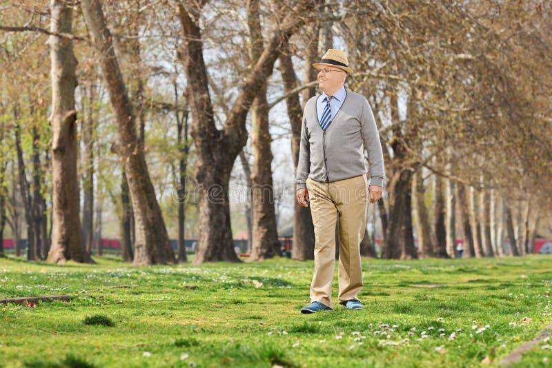 走在公园的资深绅士 图库摄影