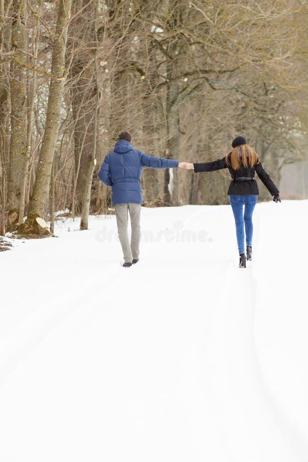 走在冬天公园的夫妇 库存照片