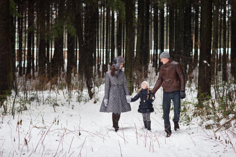 走在冬天公园的愉快的家庭 图库摄影