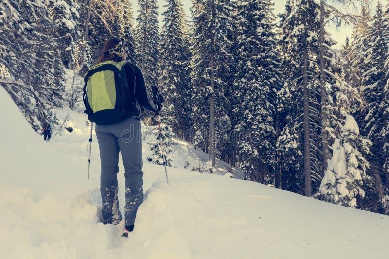 走在冬天森林里的女性远足者 库存图片