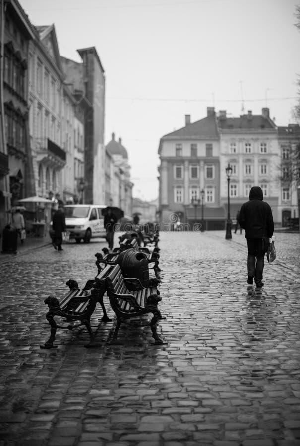 走在利沃夫州街道上的偏僻的人剪影在秋天 黑白射击,利沃夫州,乌克兰 免版税图库摄影