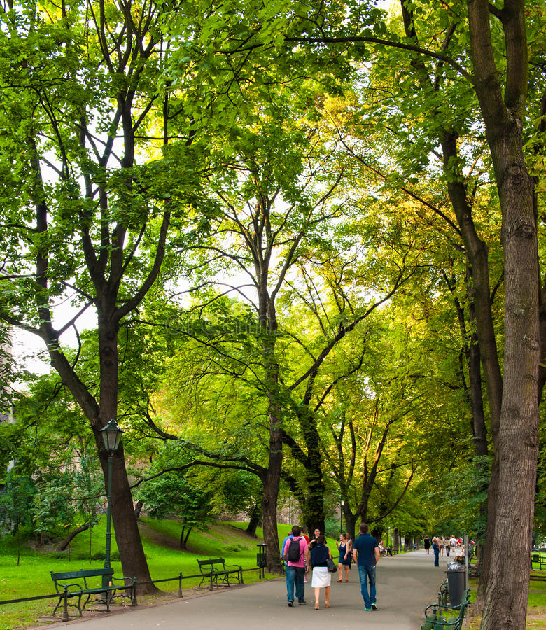 走在公园的人们在克拉科夫 库存照片