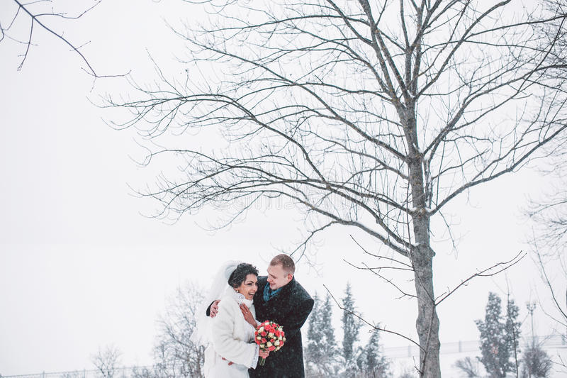 走在城市的新娘和新郎 库存照片
