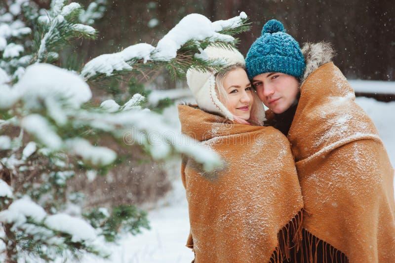 走在多雪的冬天森林里的愉快的年轻爱恋的夫妇,盖用特大围巾和拥抱 库存照片