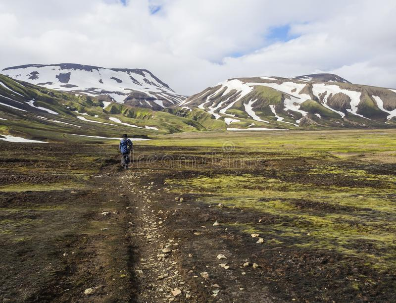 走在小径、绿草青苔草甸和雪的孤独的人远足者加盖了在冰岛自然的rhyollite山 库存照片