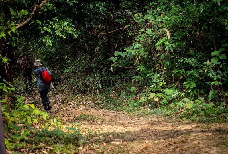 走在山的小组远足者 免版税库存图片