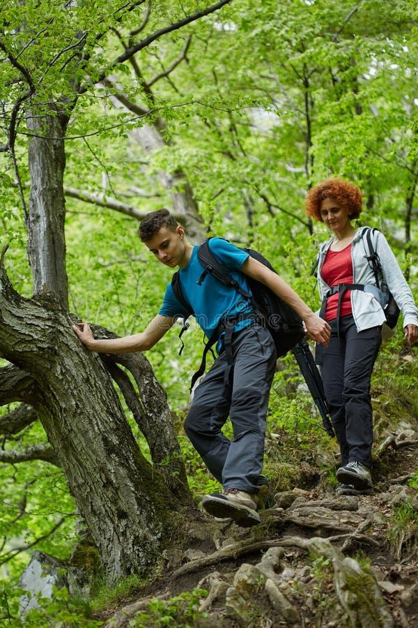 走在山行迹的远足者家庭  免版税库存照片