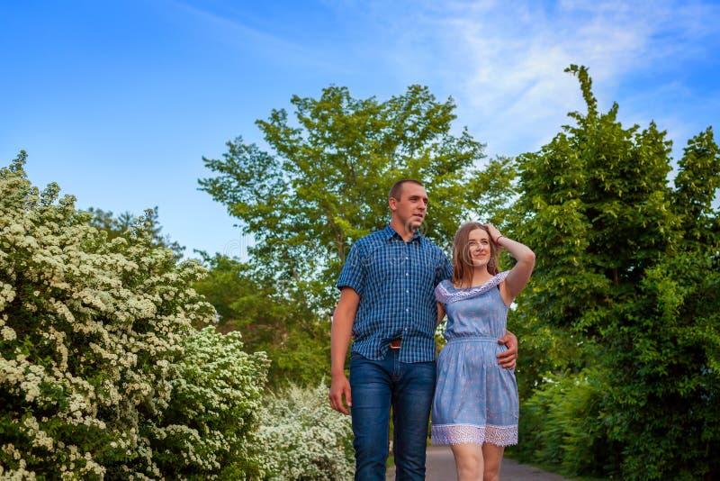 走在春天开花的公园的夫妇 年轻握手的人和女孩在日落 免版税图库摄影
