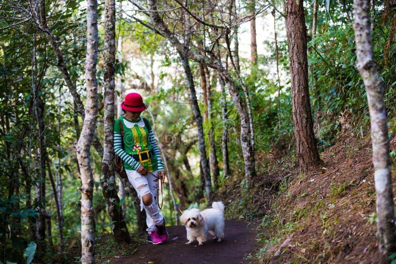 走在有狗的森林里的圣诞老人妇女 库存照片