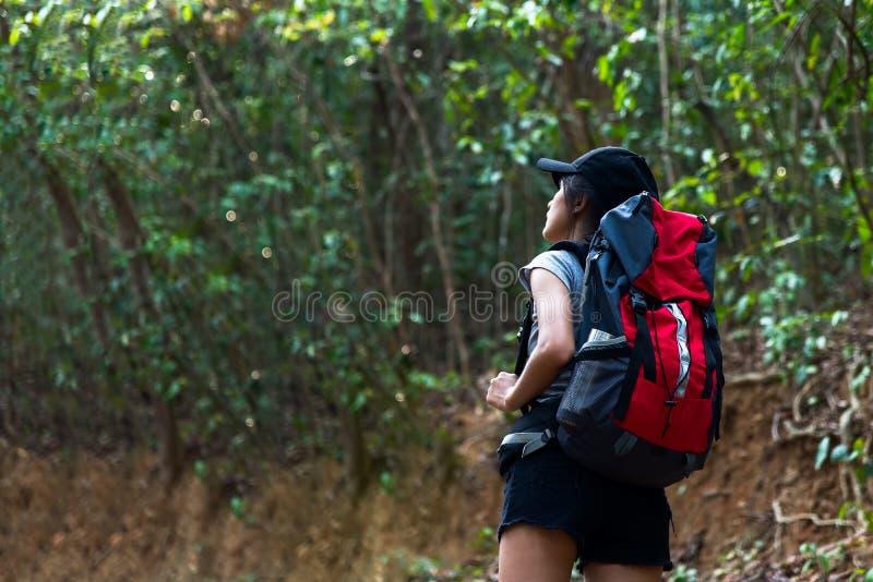 走在有背包的国家公园的远足者亚裔少妇 妇女游人去的野营 免版税图库摄影