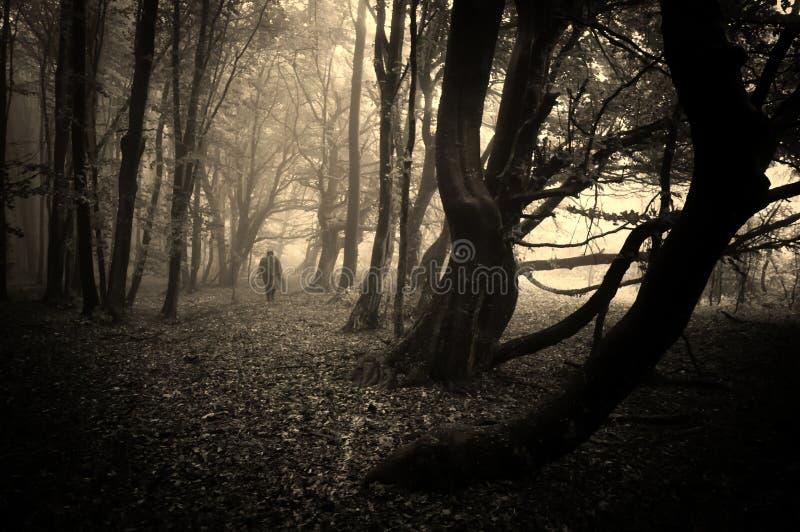 走在有雾的一个黑暗的森林里的可怕人 库存照片