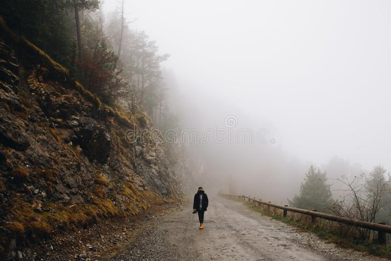 走在有雾的森林里的人 库存图片