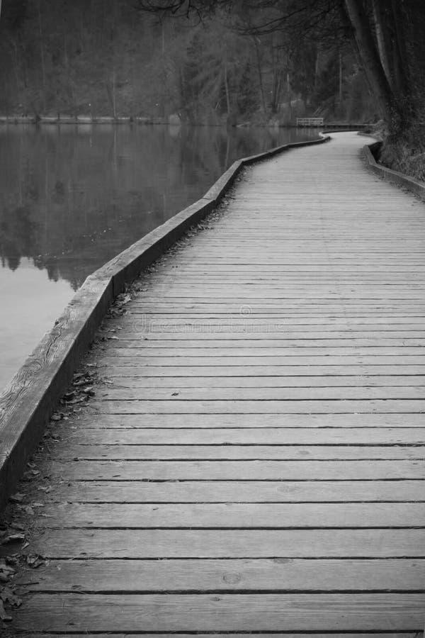 走在木路在美妙的湖附近流血呼吸的新鲜的高山空气 免版税库存图片
