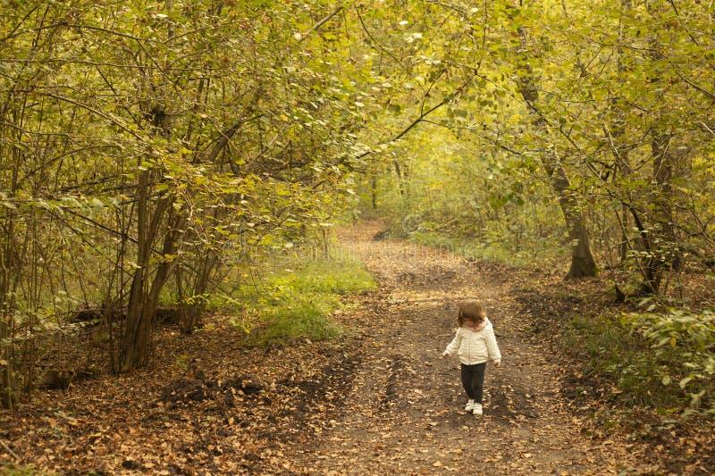 走在森林的小孩女孩在秋天 免版税库存照片