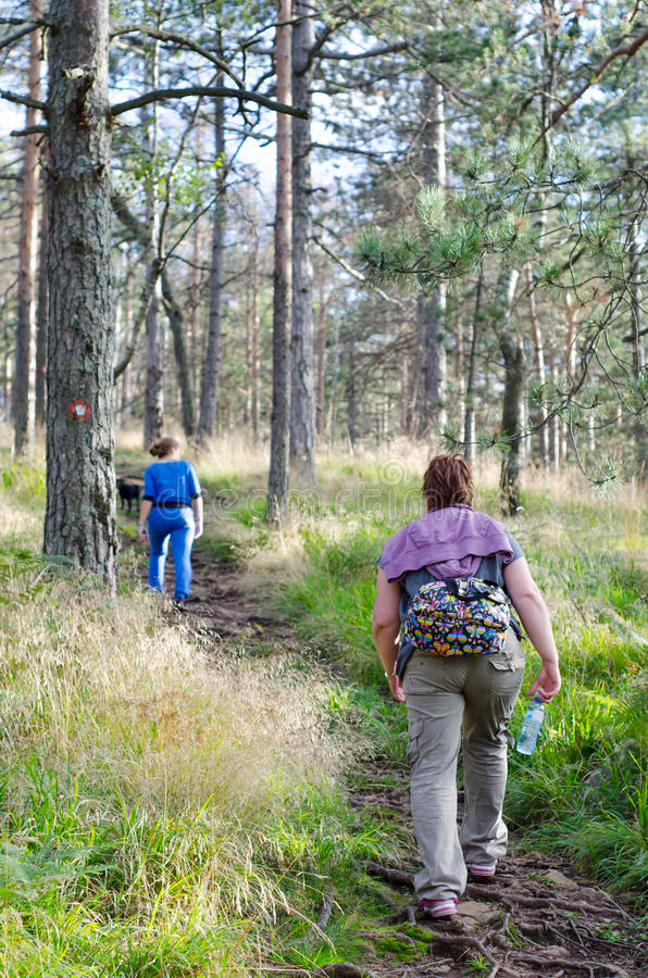 走在森林的母亲和女儿在晴朗的春日 免版税库存图片