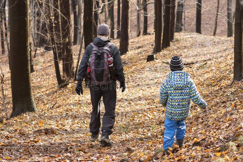 走在森林里的人们 免版税库存照片