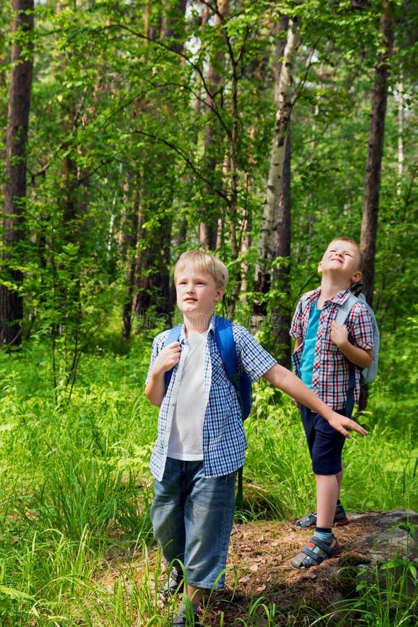 走在森林里的孩子 免版税库存图片