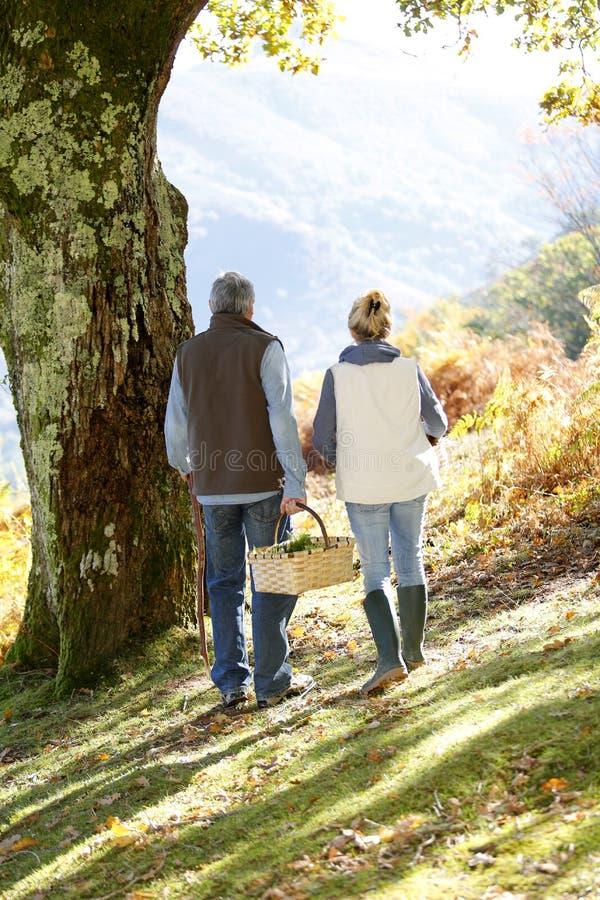 走在森林里的资深夫妇 免版税图库摄影