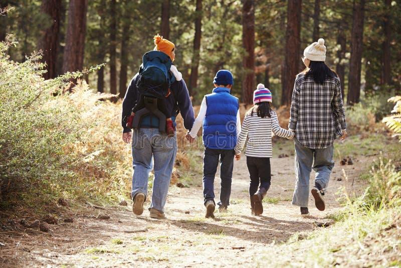 走在森林,后面看法里的父母和三个孩子 免版税图库摄影