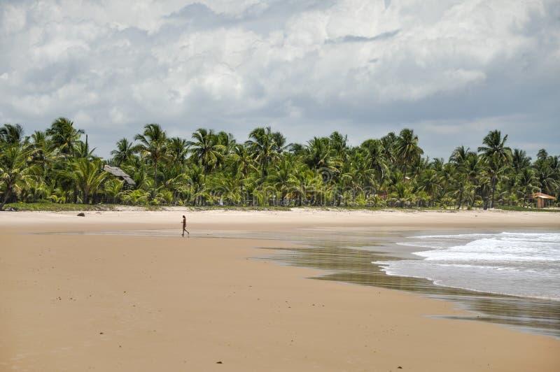 走在海滩(太浦河de Fora,巴西)的妇女 库存图片