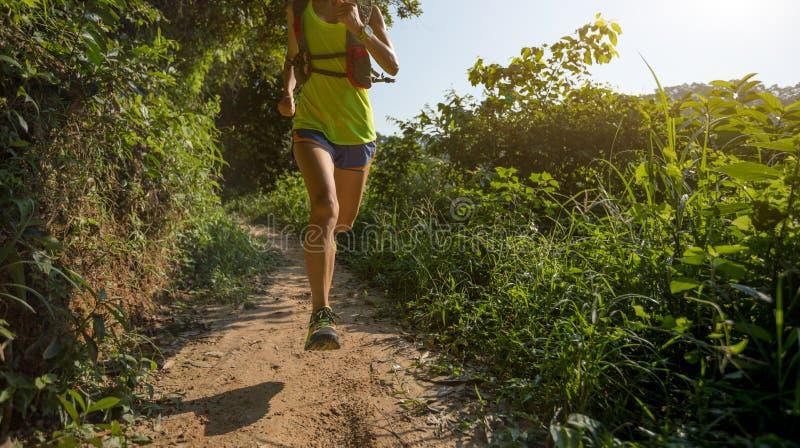 走在热带森林足迹的足迹赛跑者 免版税库存图片