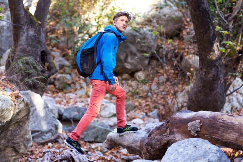 走在狂放的春天森林里的嬉戏远足者 免版税库存照片