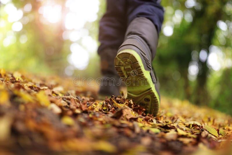 走在秋天和冬天 免版税库存照片