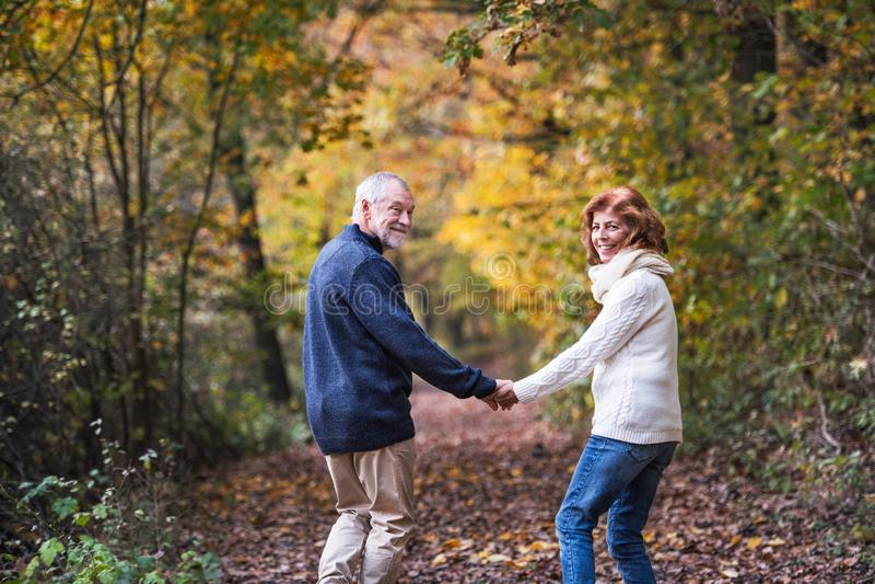 走在秋天自然的一对资深夫妇握手和回顾 图库摄影