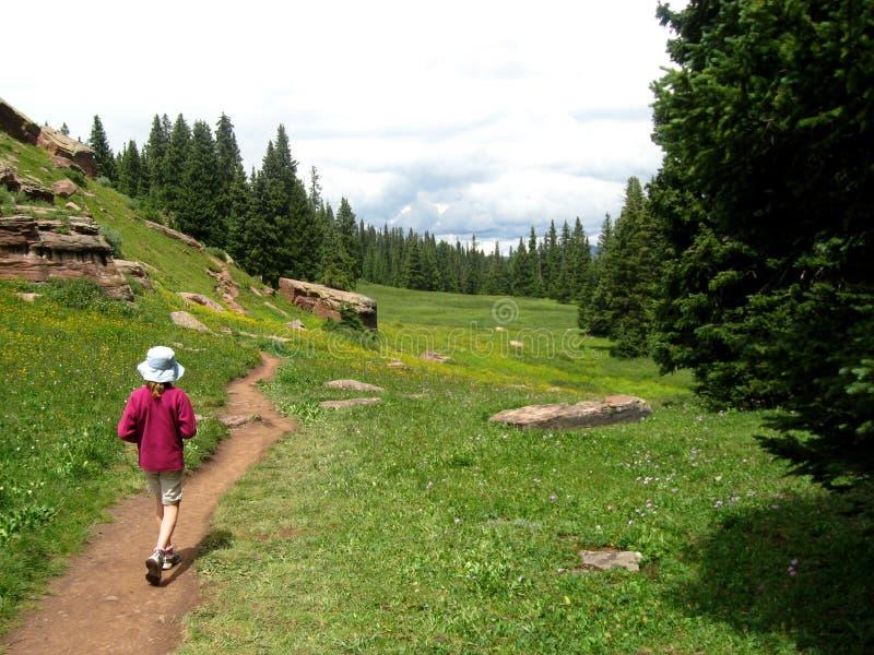 走在科罗拉多山的一串足迹  免版税图库摄影