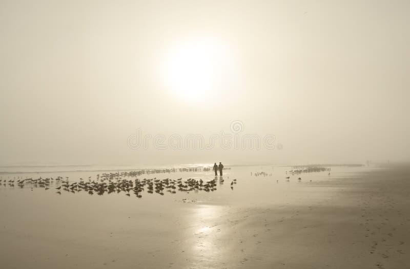 走在美丽的有雾的海滩的夫妇 免版税图库摄影