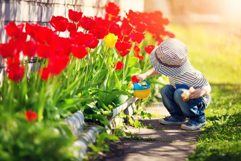 走在花床上的郁金香附近的小孩在美好的春日 免版税库存照片