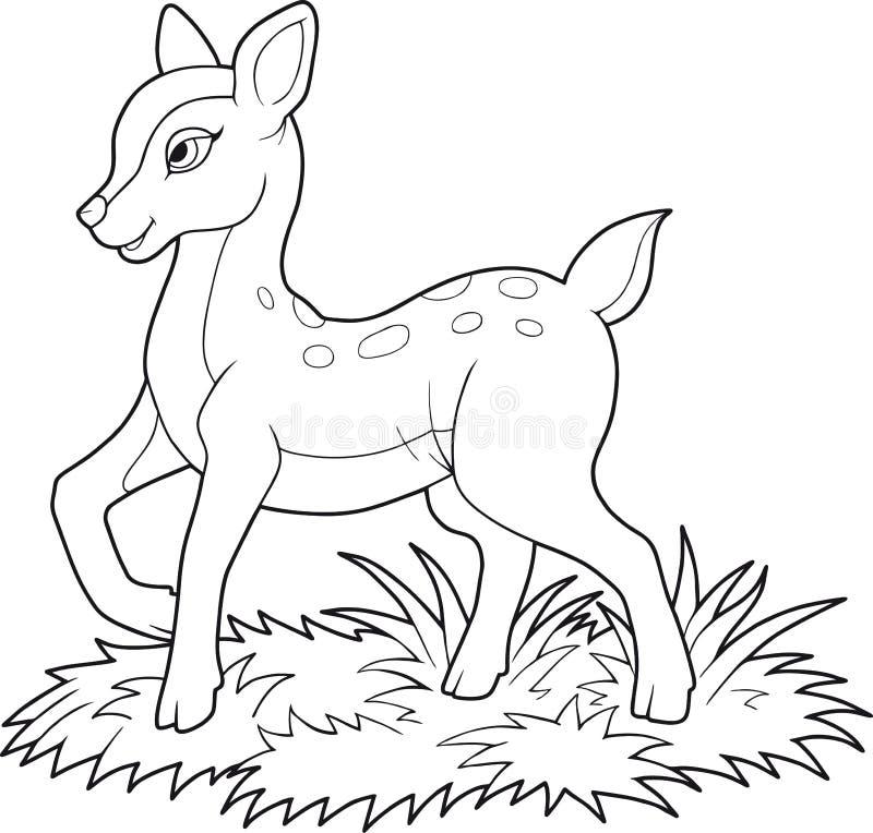 走在草坪的小鹿 库存例证