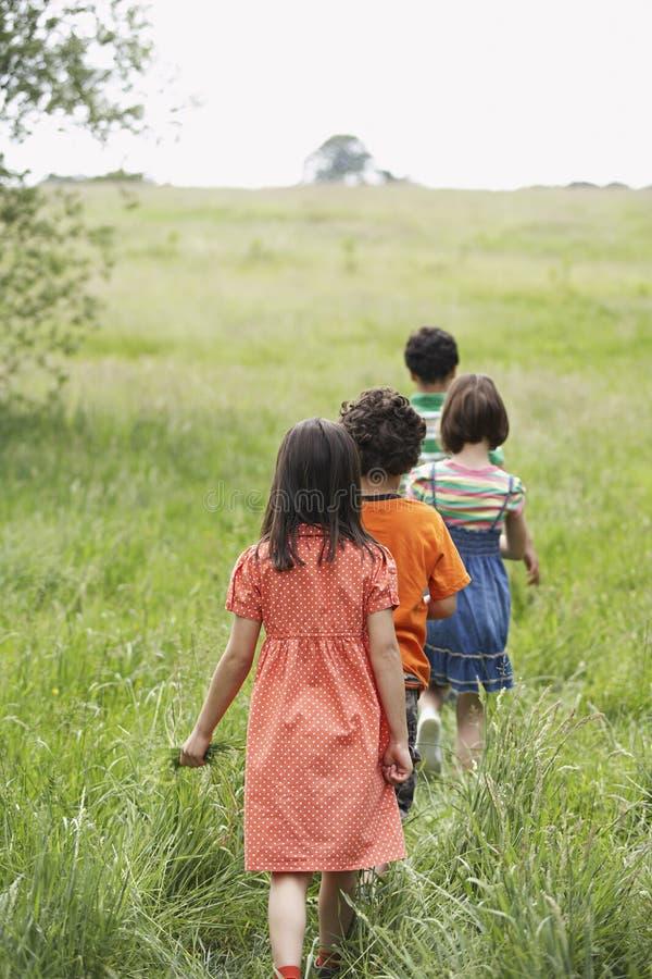 走在象草的领域的孩子 免版税库存照片