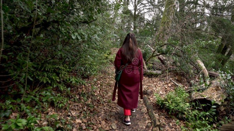 走在足迹的妇女通过绿色森林 库存照片