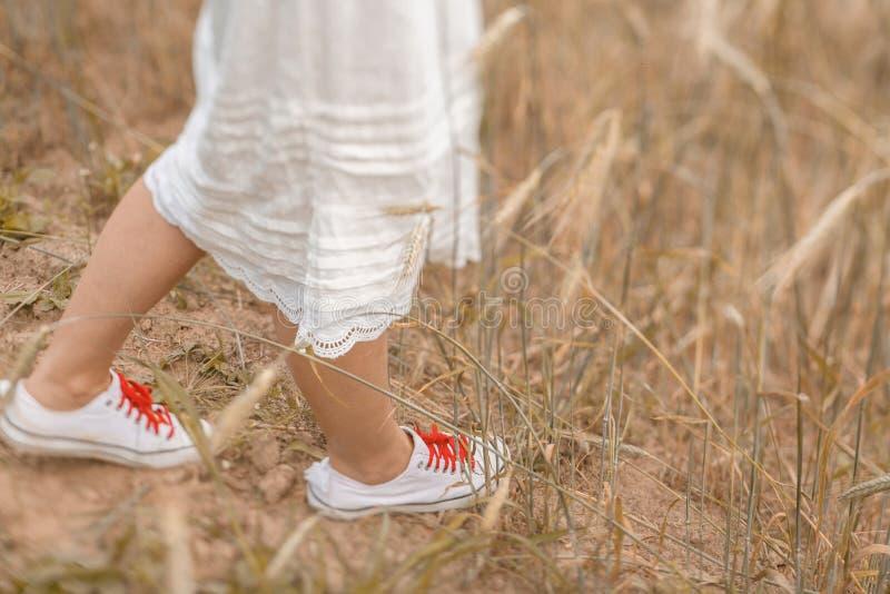 走在金黄麦子的脚特写镜头在好日子 享受本质 阳光的美女 免版税图库摄影