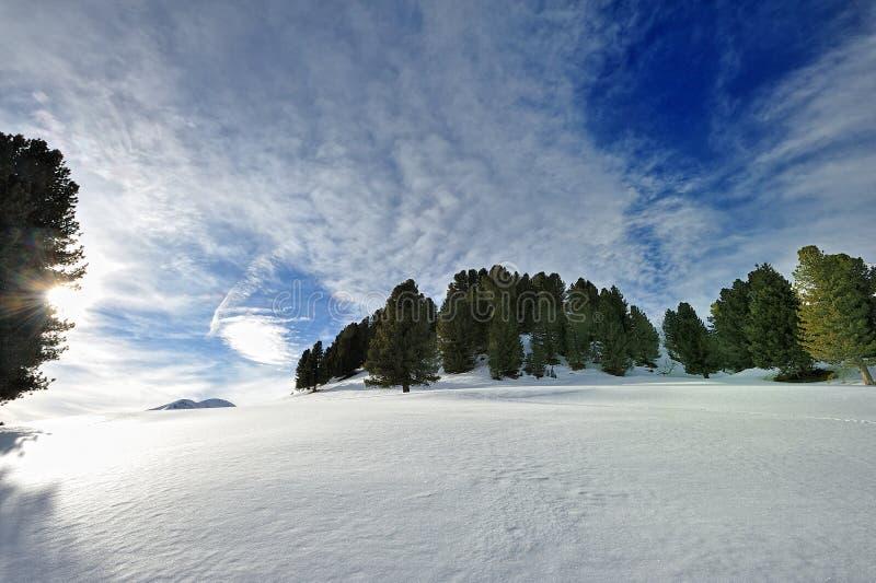 走在雪在阿尔卑斯 免版税库存图片