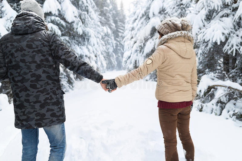 走在雪森林室外男人和妇女的年轻夫妇持有手后面观点 免版税库存图片