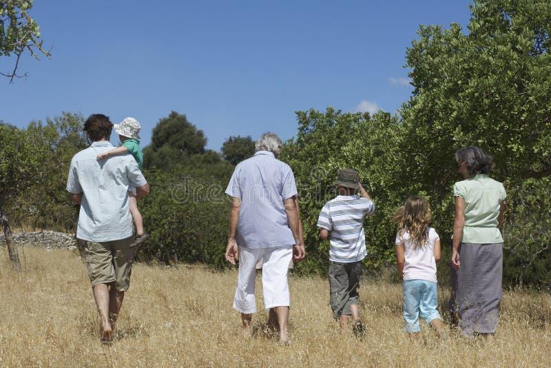 走在领域的三一代家庭 免版税库存照片