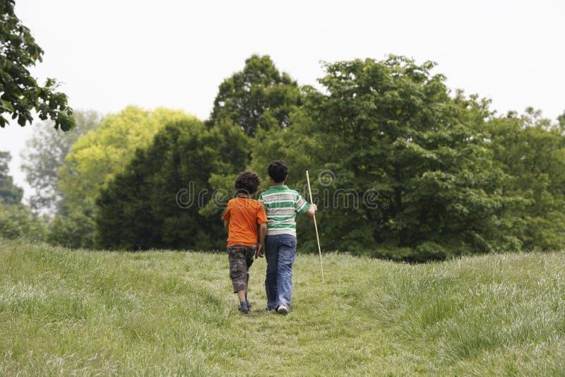 走在领域的兄弟 免版税图库摄影
