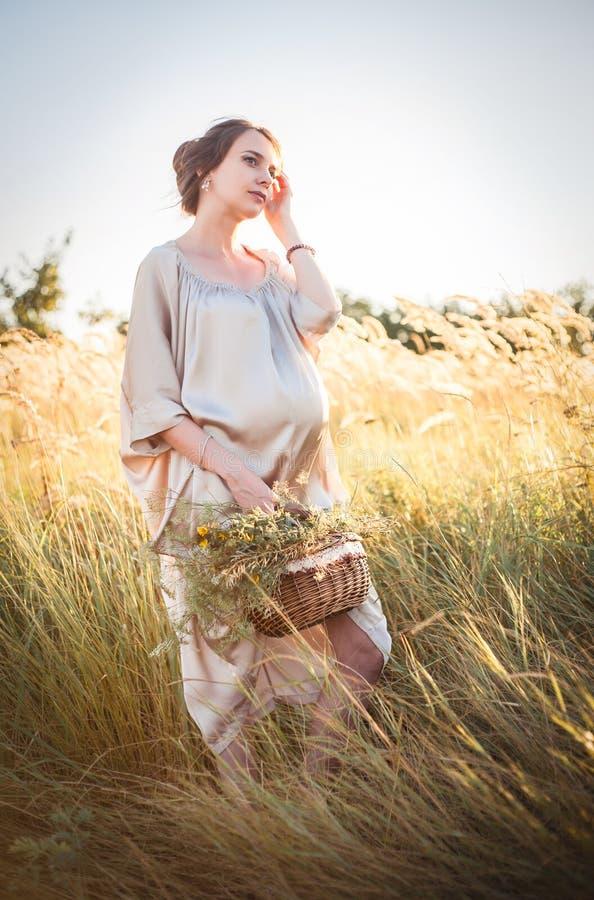 走在领域的年轻美丽的孕妇 库存照片