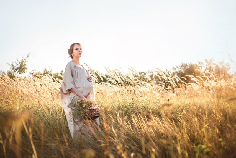 走在领域的年轻美丽的孕妇 库存图片