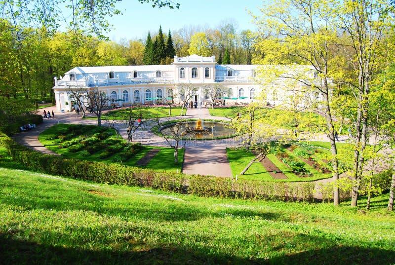 走在Pavlovsk公园 圣彼德堡郊区 库存图片