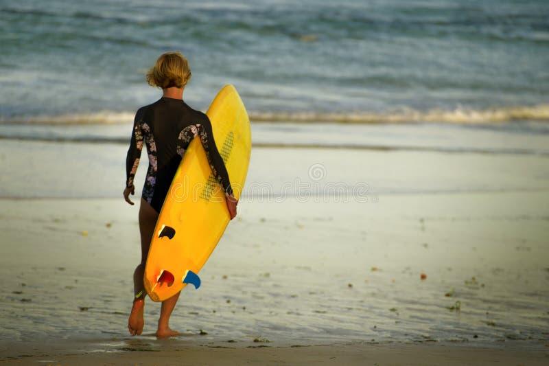 走往海的年轻愉快的冲浪者女孩后面看法画象运载黄色水橇板和为冲浪的享用的su准备 免版税库存图片