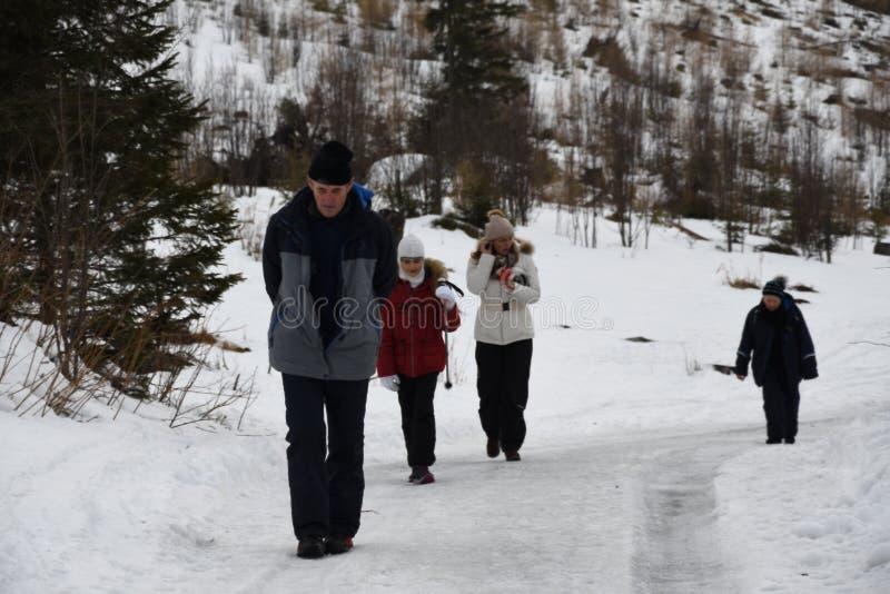 走户外在山的家庭在雪冬天 库存图片