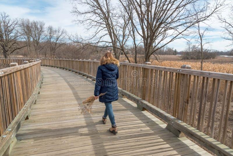走横跨木桥梁的妇女拿着野花 库存图片