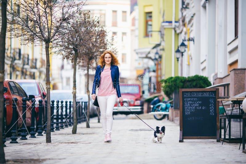 走沿有两个颜色小奇瓦瓦狗品种狗的欧洲街道的年轻红发白种人妇女在皮带的 多云,温暖 图库摄影