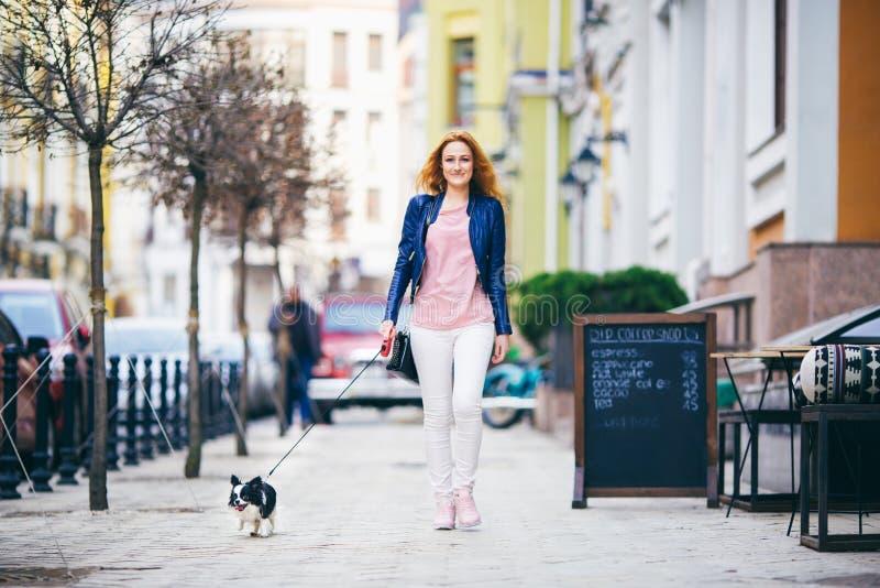 走沿有两个颜色小奇瓦瓦狗品种狗的欧洲街道的年轻红发白种人妇女在皮带的 多云,温暖 库存照片